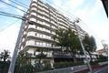 東京都目黒区、目黒駅徒歩12分の築37年 11階建の賃貸マンション