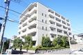 神奈川県川崎市中原区、武蔵小杉駅徒歩12分の築11年 6階建の賃貸マンション