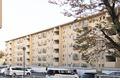神奈川県川崎市宮前区、宮前平駅徒歩6分の築39年 5階建の賃貸マンション