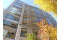 東京都港区の築1年 11階建の賃貸マンション