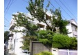東京都中野区、沼袋駅徒歩11分の築29年 3階建の賃貸マンション