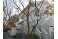 神奈川県鎌倉市、由比ヶ浜駅徒歩1分 2階建の賃貸一戸建て